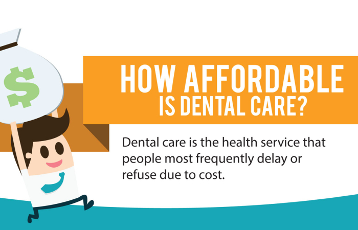 Dental Insurance: The Haves and Have-Nots